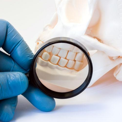 gum disease treatment in dubai